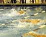 ECT/SEC Swim